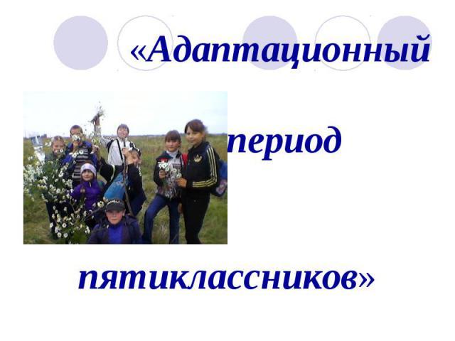 Адаптационный период пятиклассников