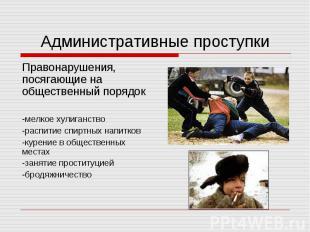 Административные проступкиПравонарушения, посягающие на общественный порядок-мел
