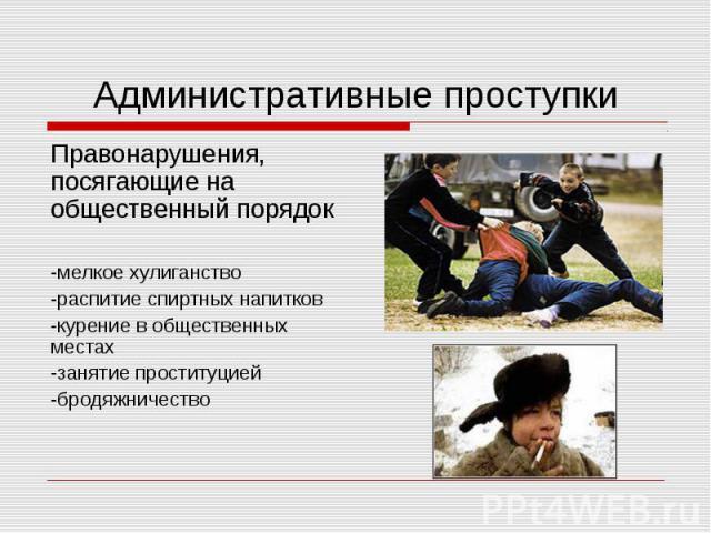 Административные проступкиПравонарушения, посягающие на общественный порядок-мелкое хулиганство-распитие спиртных напитков -курение в общественных местах-занятие проституцией-бродяжничество