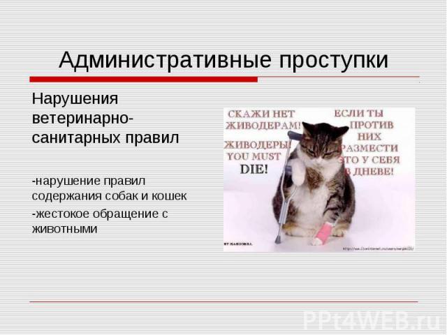 Административные проступкиНарушения ветеринарно-санитарных правил-нарушение правил содержания собак и кошек-жестокое обращение с животными