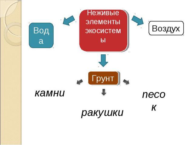 Неживые элементы экосистемы