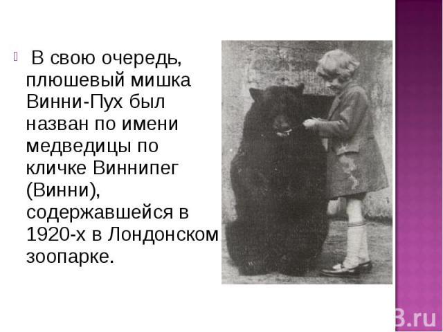 В свою очередь, плюшевый мишка Винни-Пух был назван по имени медведицы по кличке Виннипег (Винни), содержавшейся в 1920-х в Лондонском зоопарке.