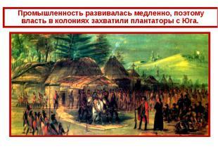 Промышленность развивалась медленно, поэтому власть в колониях захватили плантат
