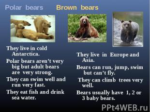 Polar bears Brown bearsThey live in cold Antarctica.Polar bears aren't very big