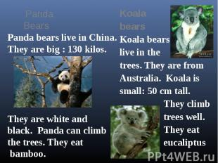 Panda Bears Panda bears live in China.They are big : 130 kilos.They are white an