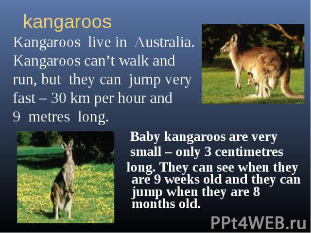 kangaroosKangaroos live in Australia.Kangaroos can't walk and run, but they can jump very fast – 30 km per hour and 9 metres long. Baby kangaroos are very small – only 3 centimetres long. They can see when they are 9 weeks old and they can jump when…