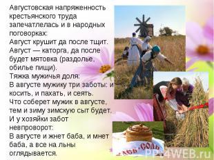 Августовская напряженность крестьянского труда запечатлелась и в народных погово