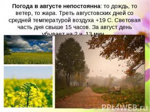 Погода в августе непостоянна: то дождь, то ветер, то жара. Треть августовских дн
