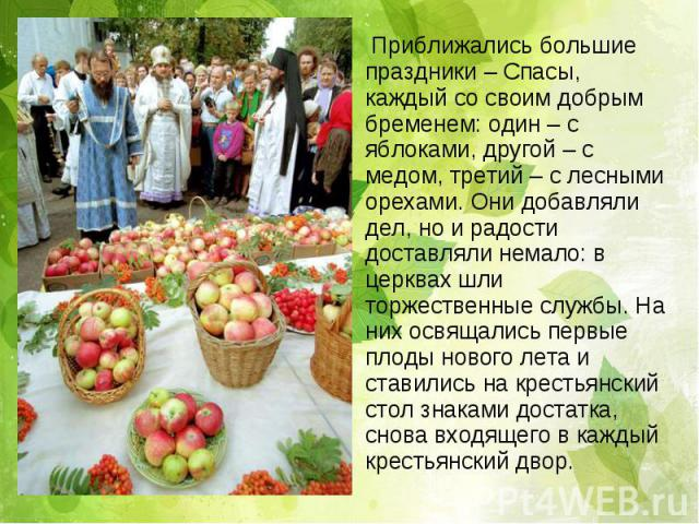 Приближались большие праздники – Спасы, каждый со своим добрым бременем: один – с яблоками, другой – с медом, третий – с лесными орехами. Они добавляли дел, но и радости доставляли немало: в церквах шли торжественные службы. На них освящались первые…