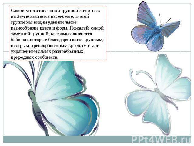 Самой многочисленной группой животных на Земле являются насекомые. В этой группе мы видим удивительное разнообразие цвета и форм. Пожалуй, самой заметной группой насекомых являются бабочки, которые благодаря своим крупным, пестрым, яркоокрашенным кр…