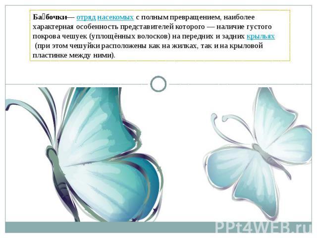 Бабочки—отряднасекомыхсполным превращением, наиболее характерная особенность представителей которого — наличие густого покрова чешуек (уплощённых волосков) на передних и заднихкрыльях(при этом чешуйки расположены как на жилках, так и на крылов…