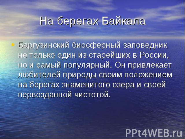 На берегах БайкалаБаргузинский биосферный заповедник не только один из старейших в России, но и самый популярный. Он привлекает любителей природы своим положением на берегах знаменитого озера и своей первозданной чистотой.