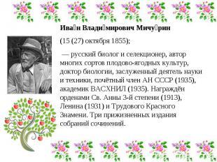 Иван Владимирович Мичурин (15 (27) октября 1855); — русский биолог и селекционе