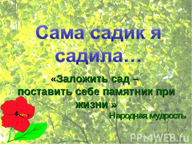 Сама садик я садила…«Заложить сад – поставить себе памятник при жизни »Народная мудрость
