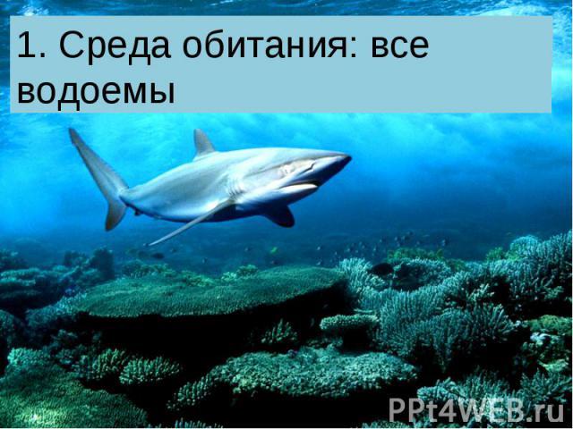 1. Среда обитания: все водоемы