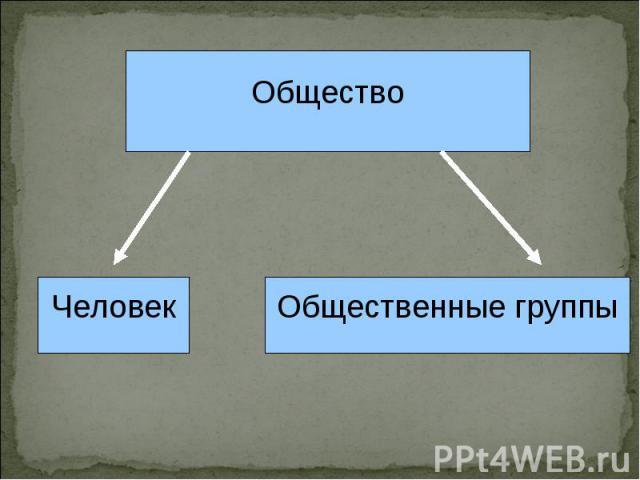 ОбществоЧеловекОбщественные группы