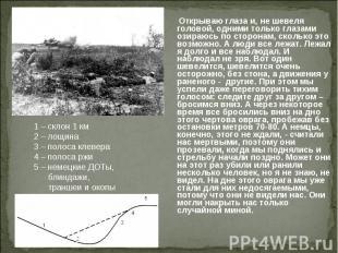 1 – склон 1 км2 – лощина3 – полоса клевера4 – полоса ржи5 – немецкие ДОТы, блинд