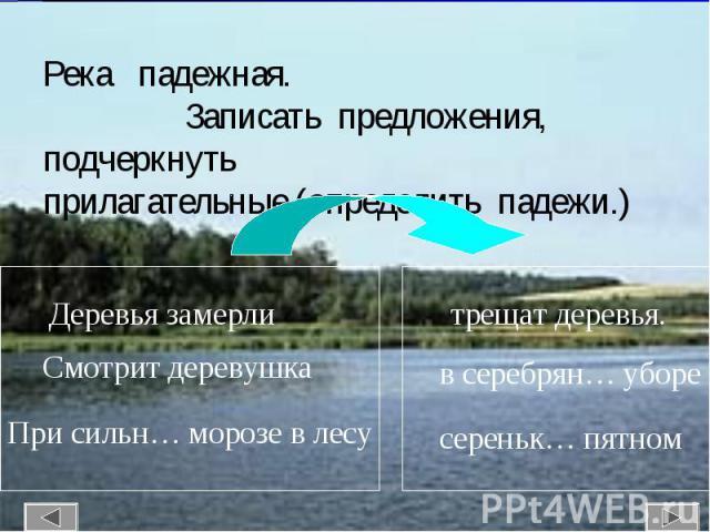 Река падежная. Записать предложения, подчеркнуть прилагательные (определить падежи.)