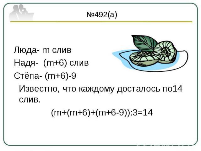 №492(а) Люда- m слив Надя- (m+6) слив Стёпа- (m+6)-9 Известно, что каждому досталось по14 слив. (m+(m+6)+(m+6-9)):3=14
