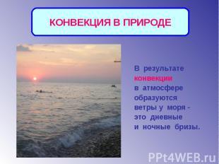 КОНВЕКЦИЯ В ПРИРОДЕВ результате конвекции в атмосфере образуются ветры у моря -