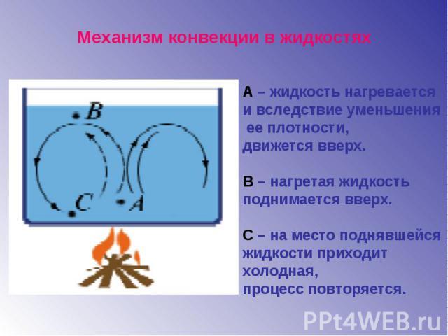 Механизм конвекции в жидкостяхА – жидкость нагревается и вследствие уменьшения ее плотности, движется вверх.В – нагретая жидкость поднимается вверх.С – на место поднявшейся жидкости приходит холодная, процесс повторяется.