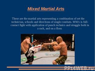 Mixed Martial ArtsThese are the martial arts representing a combination of set t