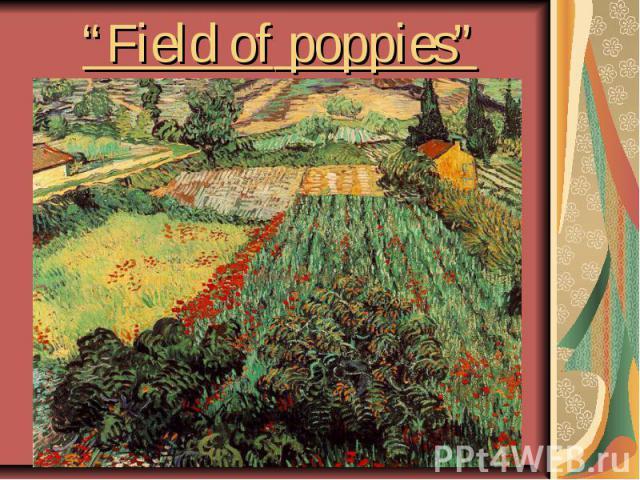 """Field ofpoppies"""