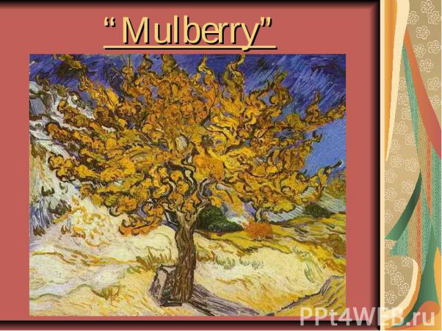 """""""Mulberry"""""""