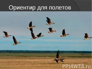 Ориентир для полетов
