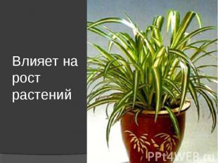 Влияет на рост растений
