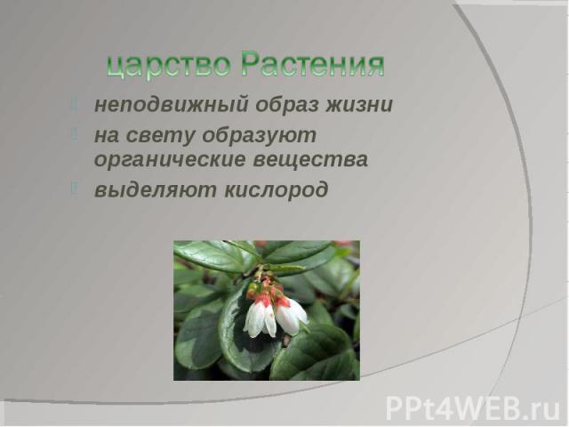 царство Растениянеподвижный образ жизнина свету образуют органические веществавыделяют кислород