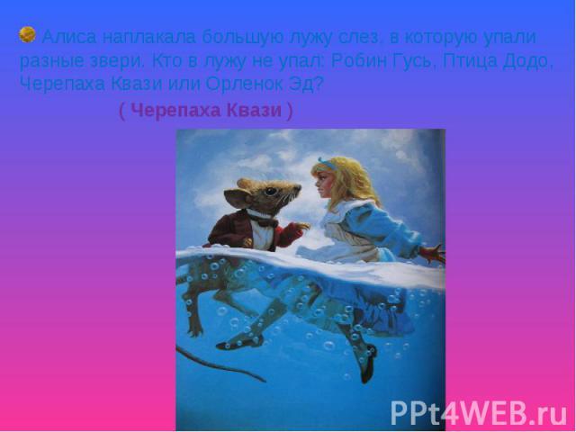 Алиса наплакала большую лужу слез, в которую упали разные звери. Кто в лужу не упал: Робин Гусь, Птица Додо, Черепаха Квази или Орленок Эд? ( Черепаха Квази )