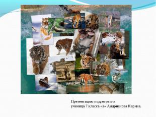 Презентацию подготовилаученица 7 класса «а» Андрианова Карина.