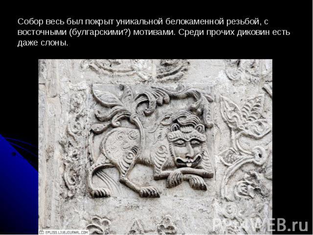 Собор весь был покрыт уникальной белокаменной резьбой, с восточными (булгарскими?) мотивами. Среди прочих диковин есть даже слоны.