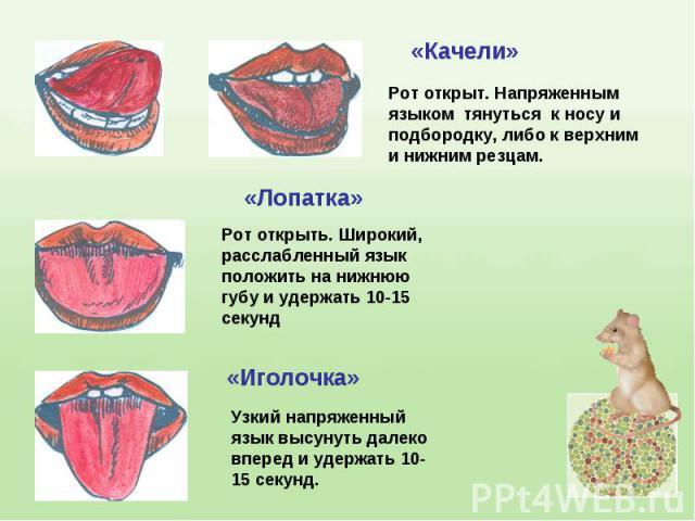 Рот открыт. Напряженным языком тянуться к носу и подбородку, либо к верхним и нижним резцам.Рот открыть. Широкий, расслабленный язык положить на нижнюю губу и удержать 10-15секундУзкий напряженный язык высунуть далеко вперед и удержать 10-15 секунд.