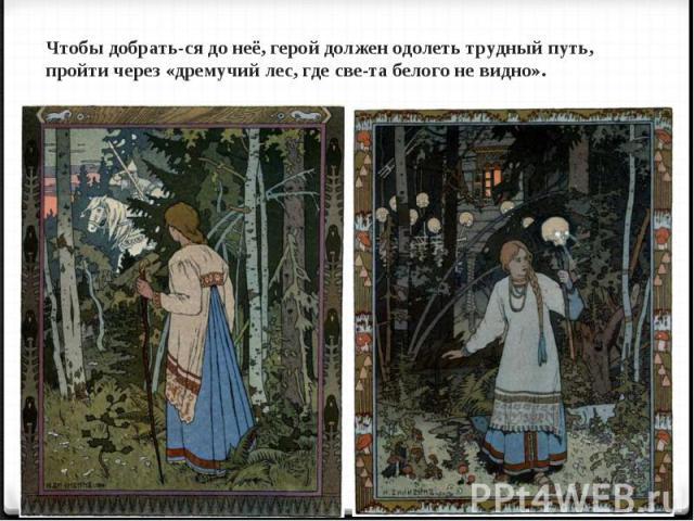 Чтобы добраться до неё, герой должен одолеть трудный путь, пройти через «дремучий лес, где света белого не видно».
