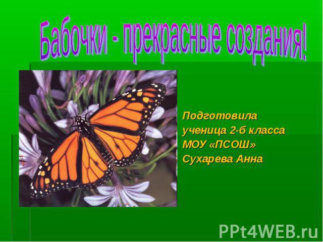 Бабочки - прекрасные создания! Подготовилаученица 2-б классаМОУ «ПСОШ»Сухарева Анна