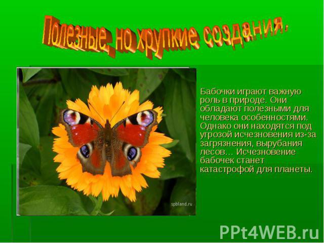 Полезные, но хрупкие создания.Бабочки играют важную роль в природе. Они обладают полезными для человека особенностями. Однако они находятся под угрозой исчезновения из-за загрязнения, вырубания лесов… Исчезновение бабочек станет катастрофой для планеты.