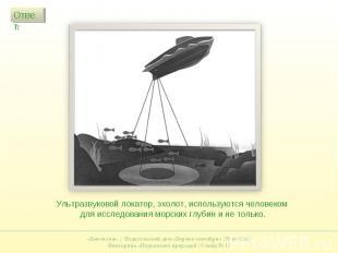 Ультразвуковой локатор, эхолот, используются человеком для исследования морских