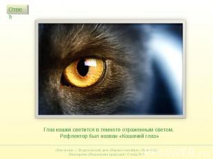 Глаз кошки светится в темноте отраженным светом. Рефлектор был назван «Кошачий г