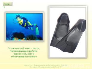 Это приспособление – ласты, увеличивающие гребную поверхность ноги и облегчающие