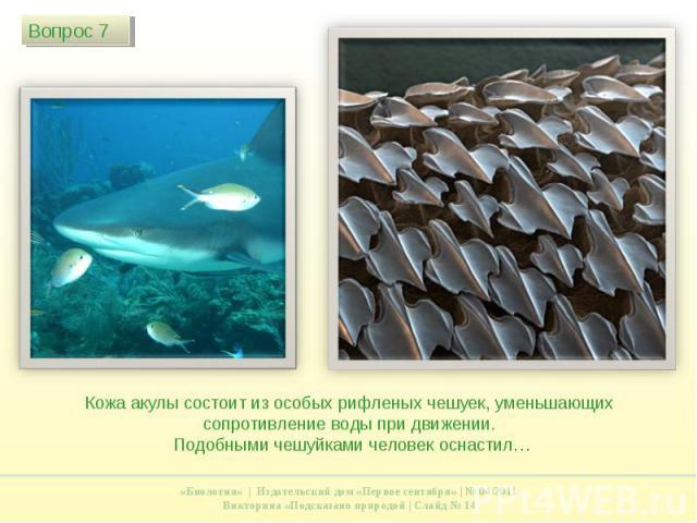 Кожа акулы состоит из особых рифленых чешуек, уменьшающих сопротивление воды при движении. Подобными чешуйками человек оснастил…