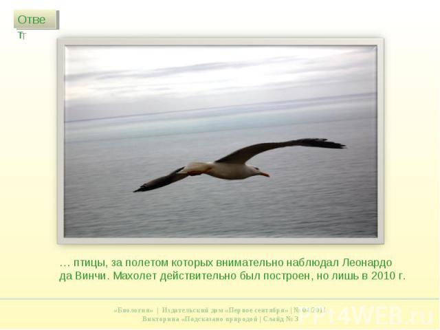 … птицы, за полетом которых внимательно наблюдал Леонардо да Винчи. Махолет действительно был построен, но лишь в 2010 г.