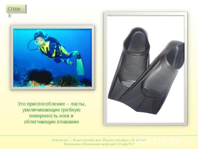 Это приспособление – ласты, увеличивающие гребную поверхность ноги и облегчающие плавание