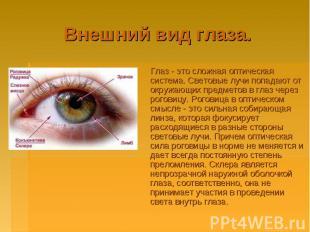 Внешний вид глаза. Глаз - это сложная оптическая система. Световые лучи попадают