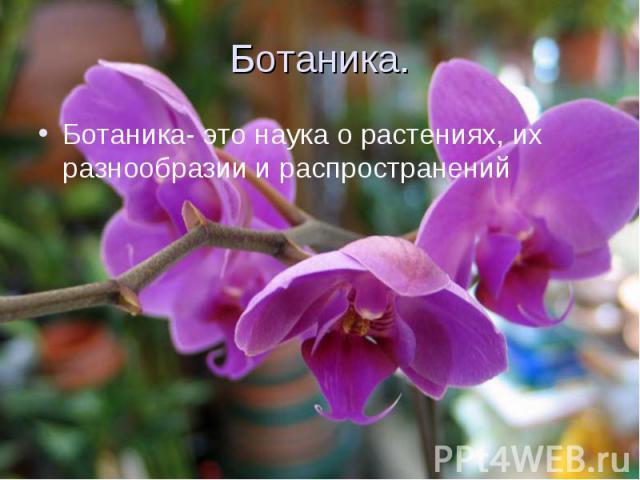 Ботаника. Ботаника- это наука о растениях, их разнообразии и распространений