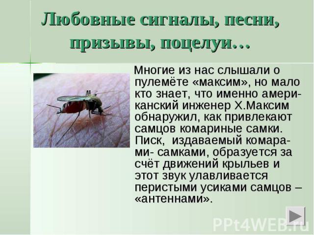 Любовные сигналы, песни, призывы, поцелуи… Многие из нас слышали о пулемёте «максим», но мало кто знает, что именно амери-канский инженер Х.Максим обнаружил, как привлекают самцов комариные самки. Писк, издаваемый комара-ми- самками, образуется за с…