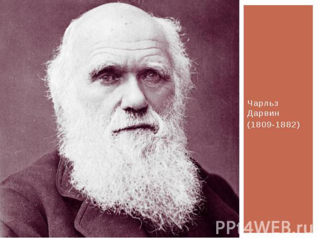 Чарльз Дарвин(1809-1882)