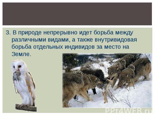 3. В природе непрерывно идет борьба между различными видами, а также внутривидовая борьба отдельных индивидов за место на Земле.