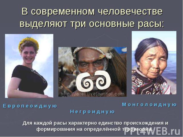 В современном человечестве выделяют три основные расы:Для каждой расы характерно единство происхождения и формирования на определённой территории.